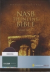Thinline Bible - NAS (burgundy, bonded leather, large print)