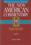 Acts - The New American Commentary