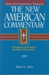 Job - The New American Commentary