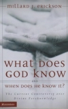 What Does God Know and When Does He Know It? - The Current Controversy over Divi